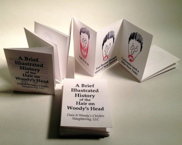 A Brief Illustrated History of the Hair on Woody's Head